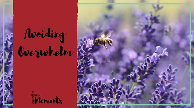Avoiding Overwhelm
