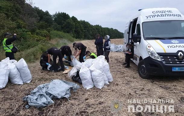 У лісосмузі на Луганщині виявили 150 кг марихуани