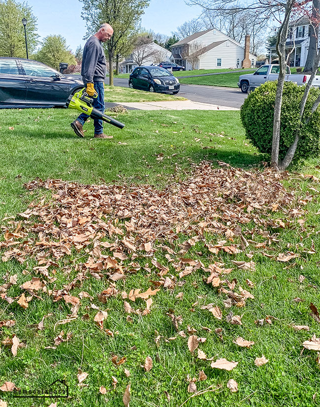 Blowing leaves in the yard with Ryobi Whisper series blower