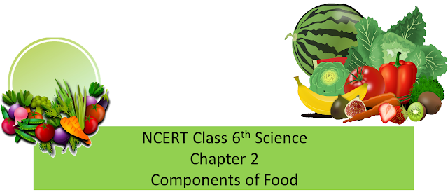 NCERT Class 6th Science, Chapter 2 components of food, ncert class 6 free solutions, CTET paper II content, CTET science content