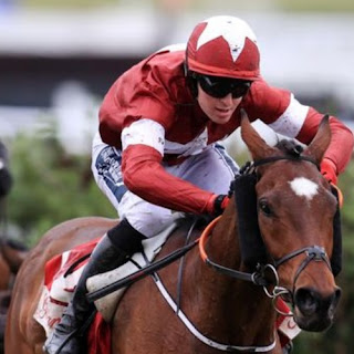 Tiger Roll Could Be Retired After Cheltenham