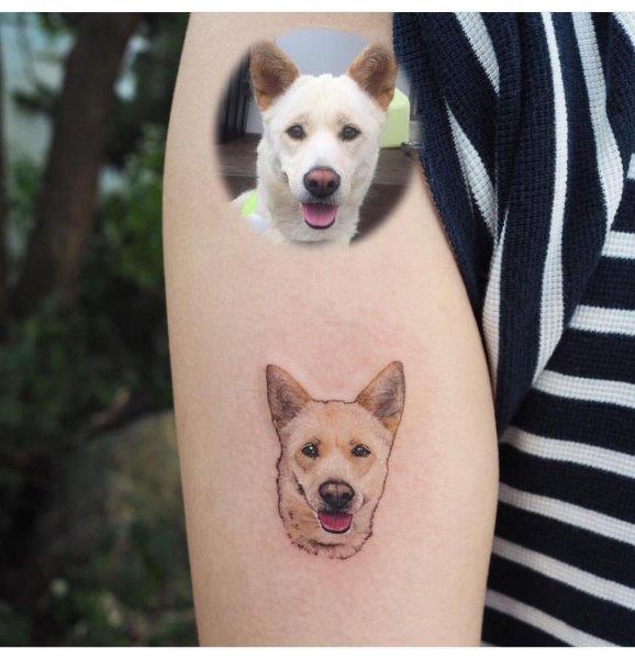 Kishu Tattoo