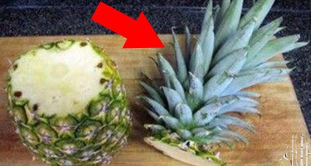nu mai arunca frunzele ananasului