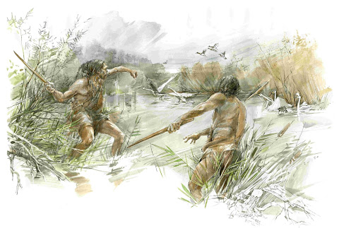 Homo heidelbergensis used wooden weapons to hunt waterbirds and horses