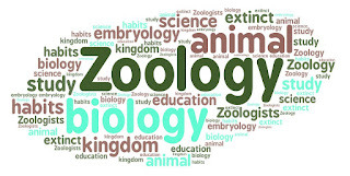 Zoology Solved Mcqs