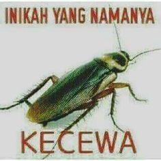 Status Whatsapp Keren Singkat