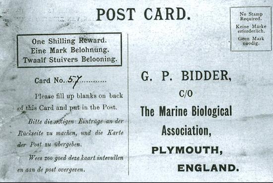 Cartão postal da mensagem na garrafa mais antiga já encontrada