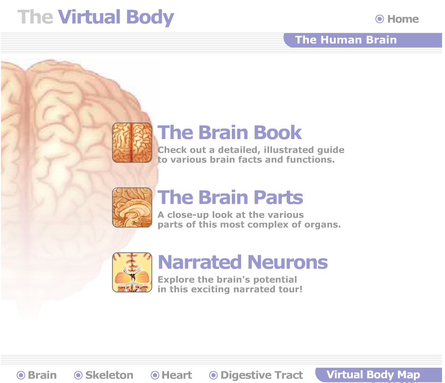 Great Websites To Teach Anatomy Of Human Body In 3d Educational