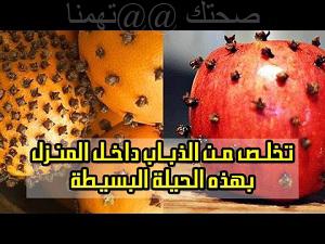 طريقة طرد الذباب -التفاح بالقرنفل