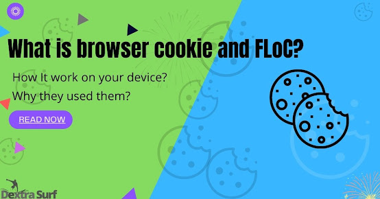 What is browser cookie?