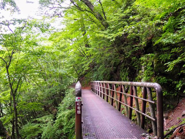 西沢渓谷 43号橋
