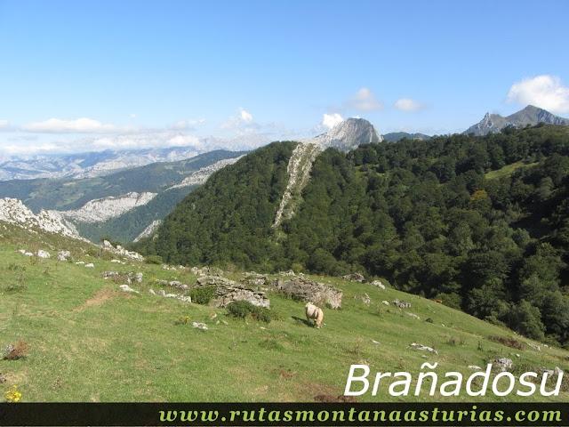 Ruta circular de Taranes al Tiatordos: Brañadosu