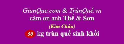 Trùn quế Kim Châu