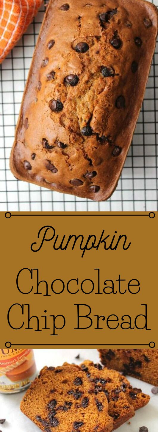 PUMPKIN CHOCOLATE CHIP BREAD #desserts #pumpkin #cakes #pie #chocolate
