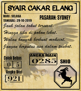 SYAIR SYDNEY 29-10-2019