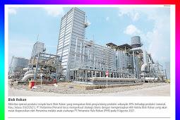 Pertamina Prepares 9 Main Areas for Transfer of Management of the Rokan Block
