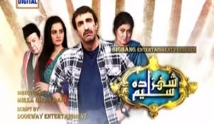 Shehzada Saleem Episode 66 on Ary Digital Full - 10th May 2016 ...