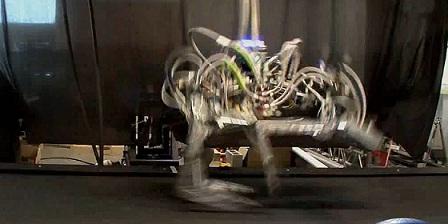 شاهد أسرع فهد آلي يحطم الرقم القياسي في سرعة الروبوتات Robots
