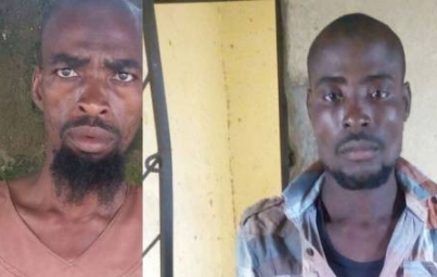 boko haram militant surrenders