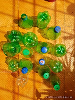 soda planter