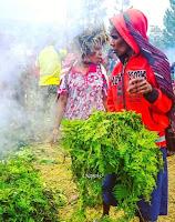 Tradisi Bakar Batu Papua