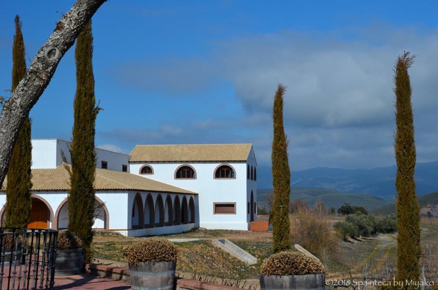 Dehesa del Carrizal デエサ·デ·カリサル ラマンチャのパゴワインのワイナリー外観