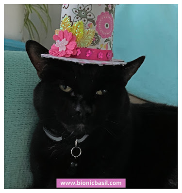 Easter Special Crafting with Cats ©BionicBasil® How to Make An Easter Top Hat - Parsley
