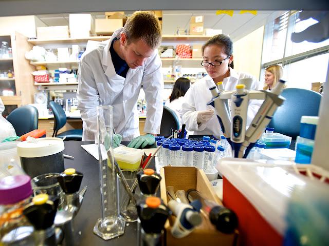 7 Fakultas Kedokteran Terbaik di Dunia Tahun 2021
