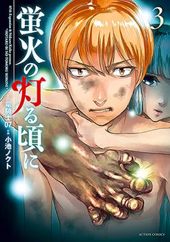 Hotarubi no Tomoru Koro ni Manga