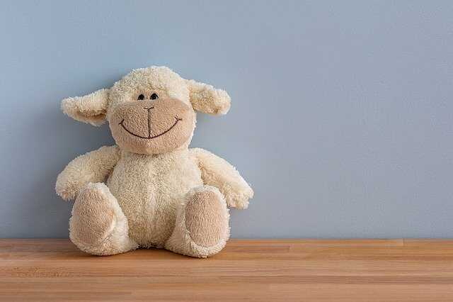 Teddy Bear Pic Free Download