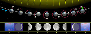 Imagen de las Fases de la Luna