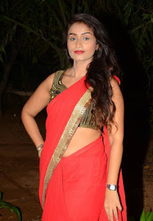 Kiran Chetavani Hot Stills in Saree 14.jpg