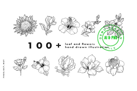 Free Download Leaf and Flowers hand drawn illustration DEMO - PNG & AI File