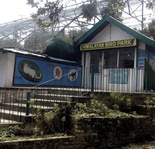Shimla Attraction - Himalayan Aviary Shimla