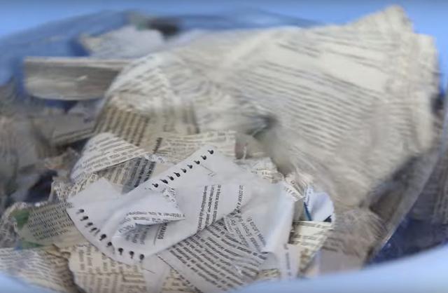trozos, papel, viejo, barreño, agua, reciclar