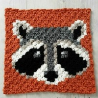 Racoon C2C Square