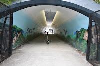 Arncliffe Street Art - Krimsone, Scott Nagy & Alex Grilanc