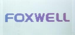 foxwell-bt100-langeuge