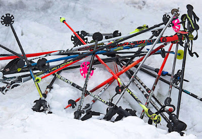Палки для горных лыж