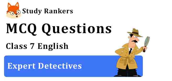 MCQ Questions for Class 7 English Chapter 6 Expert Detectives Honeycomb