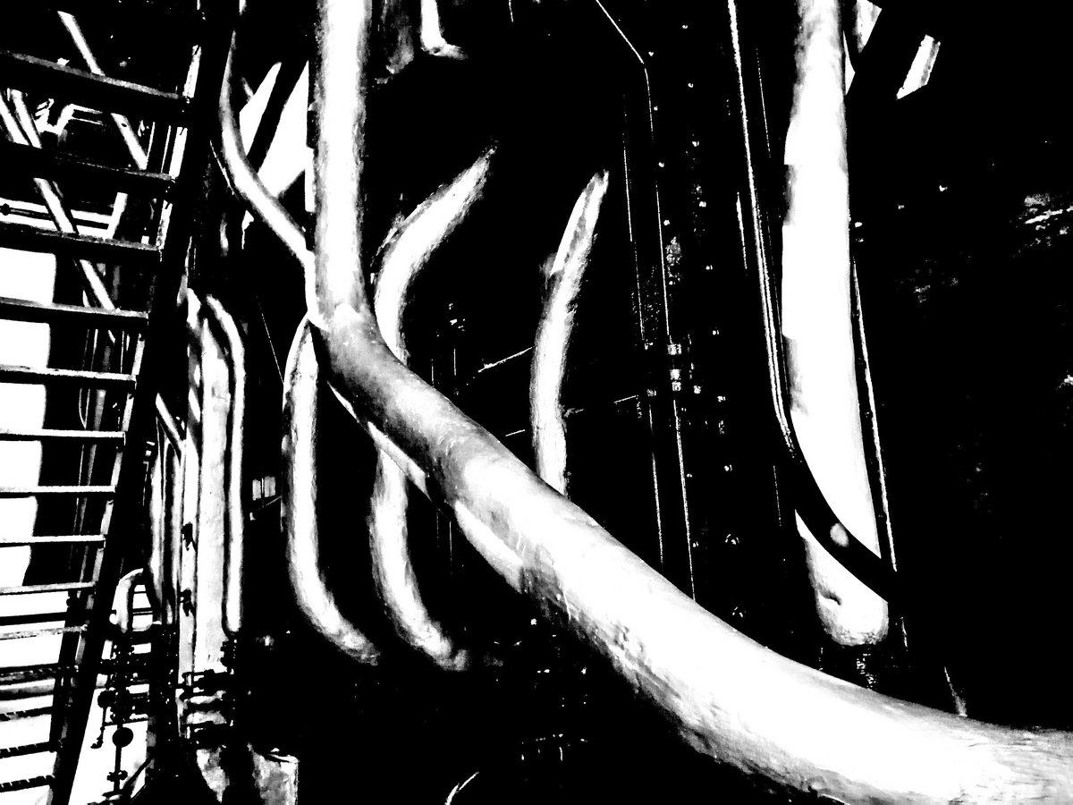 Isolamento Acidental: uma compilação documental ao confinamento português