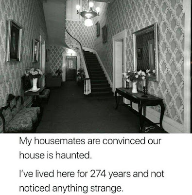 My housemates are convinced our house is haunted.  I've lived here for 274 years and not noticed anything strange