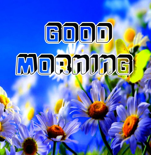 good morning 4k hd images