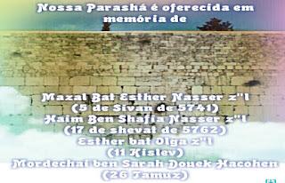 Mensagem da Parashá - Reê