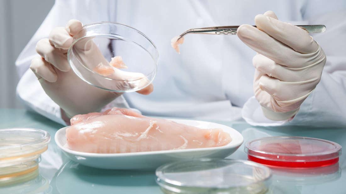 تناول اللحم دون قتل الحيوانات في طريقه أن يصبح حقيقة