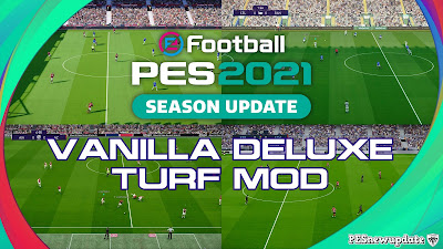 PES 2021 Turfs Vanilla Deluxe Mod by Endo