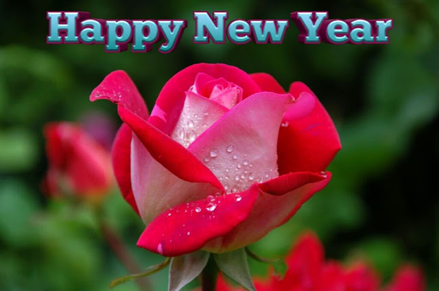 Happy New Year 2020, Happy New Year 2020 Quotes