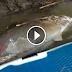 Έπαθε πλάκα όταν είδε τι… ψαρούκλα είχε πιάσει! (ΣΥΓΚΛΟΝΙΣΤΙΚΟ ΒΙΝΤΕΟ)