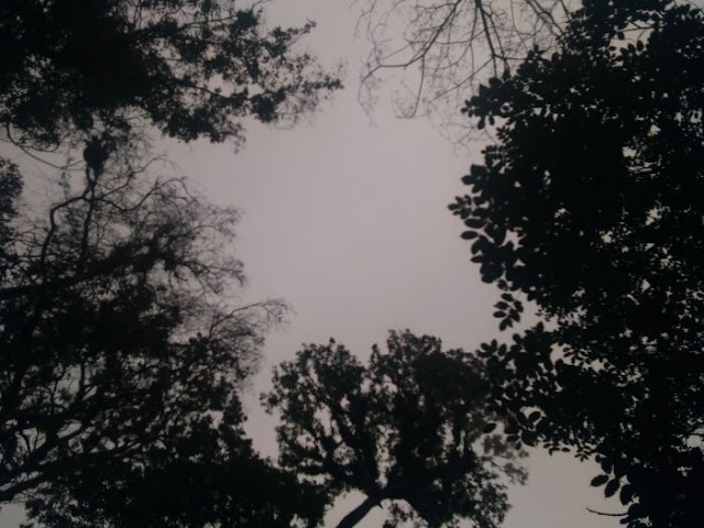Misteri di Gunung Butak