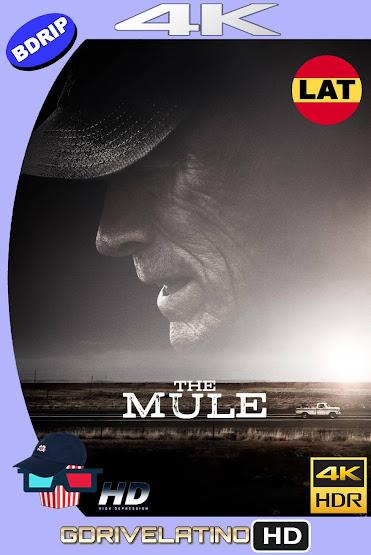 La Mula (2018) BDRip 4K HDR Latino-Ingles MKV
